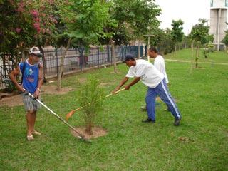 Cuidando Jardins